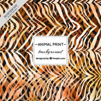 Acquerello animale background