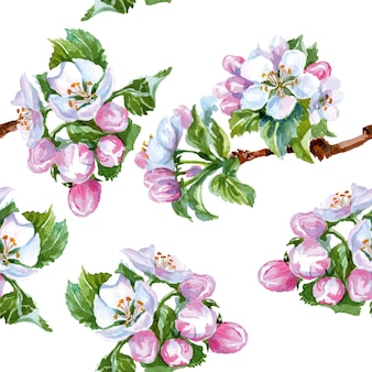 Watercolor apple flowers. seamless background . vector illustration.