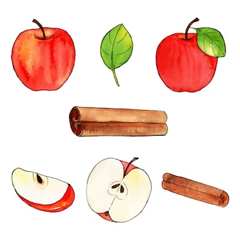Watercolor apple and scroll collection