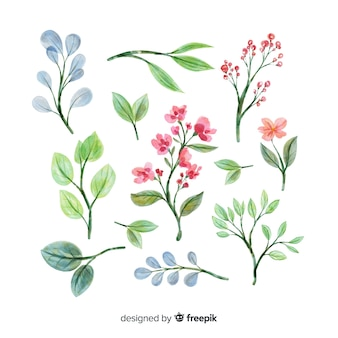 Watercolor artistic floral branch collection