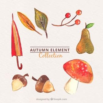 Elementi di autunno dell'acquerello