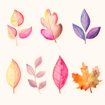 Watercolor autumn leaves collection