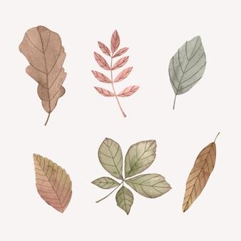 水彩の紅葉コレクション