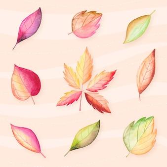 수채화 단풍 컬렉션