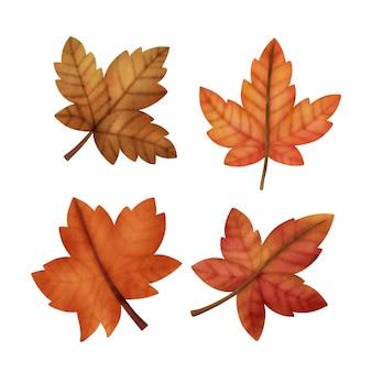 Акварельные осенние кленовые листья