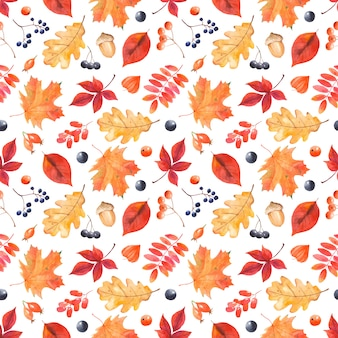 Watercolor autumn pattern with colorful leaves and berries