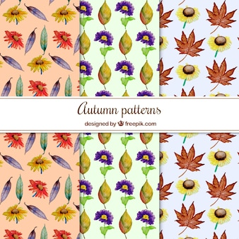 Watercolor autumn patterns with leaves and flowers