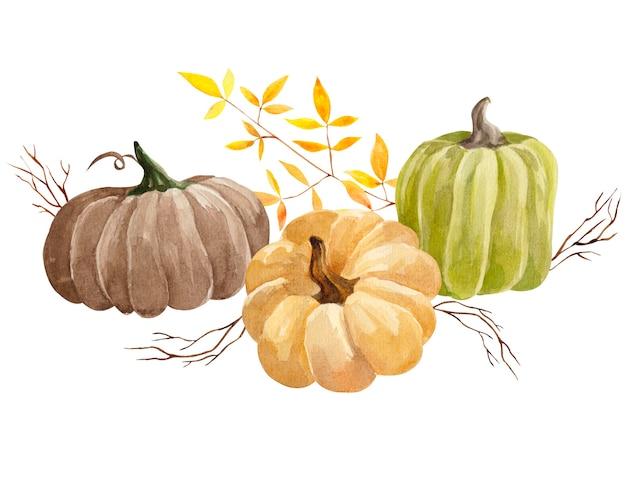 Коллекция акварельных осенних тыкв и листьев