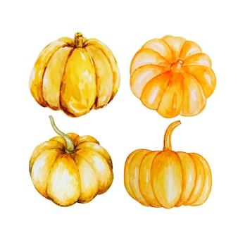 Watercolor autumn pumpkins .
