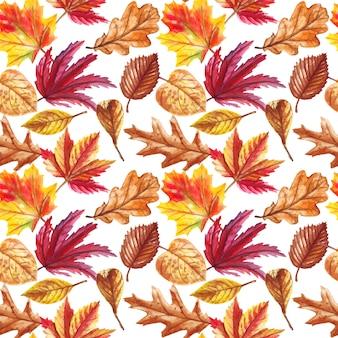 白で隔離落ち葉で水彩の秋のシームレスパターン