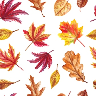Watercolor autumn seamless pattern with fallen leaves isolated on white