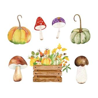 Акварель осенний набор листьев, ветвей, желудь, грибов и тыквы, изолированных на белом фоне.