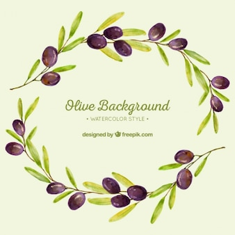 Watercolor background of olive branches