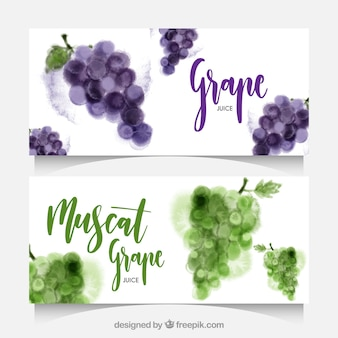 Watercolor banners of grapes