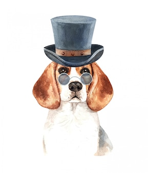 Watercolor beagle with sunglasses and top hat.