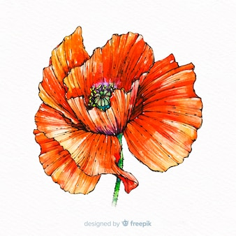 Watercolor beautiful coral flower