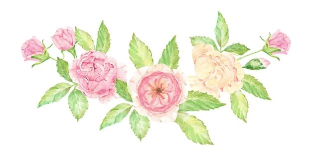 Акварель красивый букет английских роз изолированы