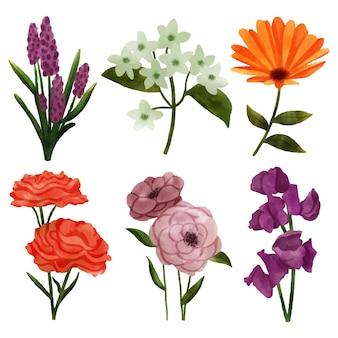 水彩の美しい春の花コレクション