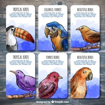 水彩鳥のステッカー