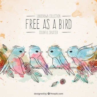 Watercolor birds on a cord