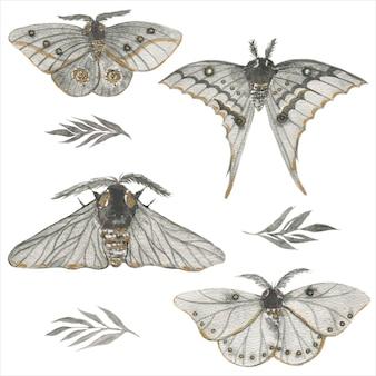 水彩の黒い蝶の蛾のイラスト。手描きの白い孤立した背景。