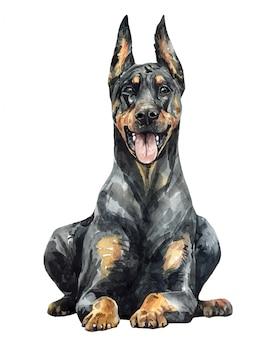 水彩の黒いドーベルマン犬のピンシャー。かわいいドーベルマン。ドーベルマンペイント。