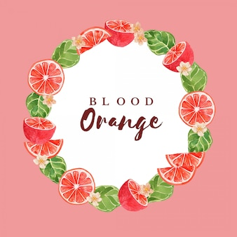 Watercolor blood orange citrus fruit frame border illustration template
