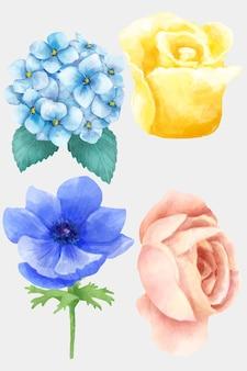 Collezione di clipart di fiori che sbocciano ad acquerello