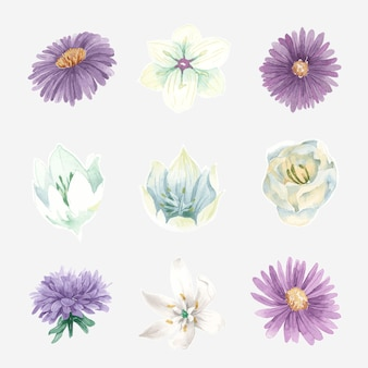 水彩咲く花セット