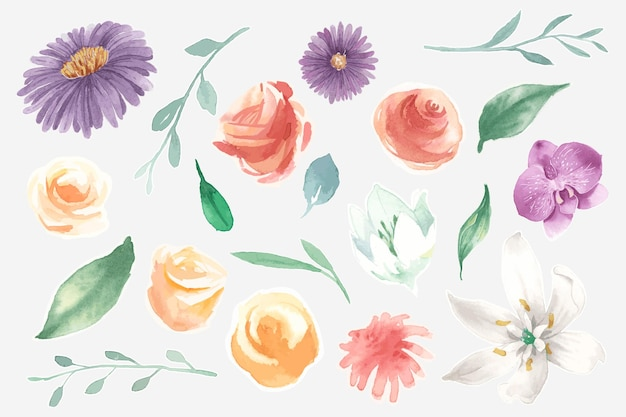 Watercolor blooming flowers set
