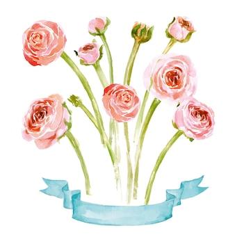 水彩咲くラナンキュラスセット。手描きのベクトル図です。