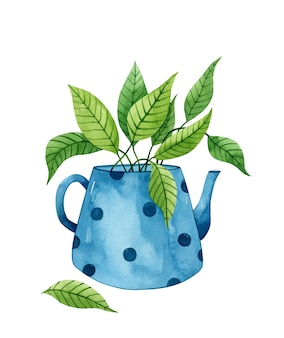 Watercolor blue teapot with a green plant inside isolated on white background