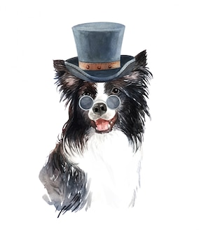 Watercolor border collie with sunglasses and top hat.