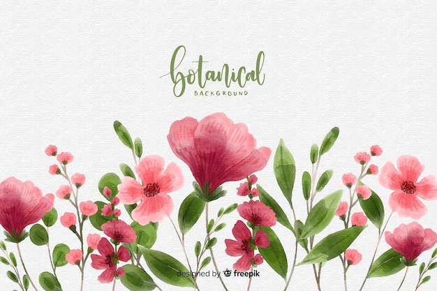 Watercolor botanical background