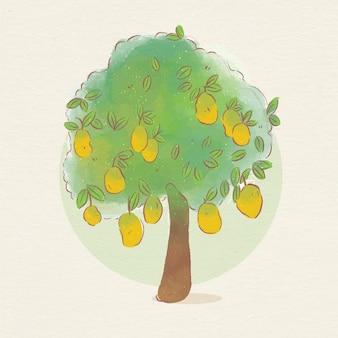 수채화 식물 망고 나무