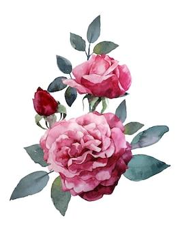 Акварельный букет из розовых роз