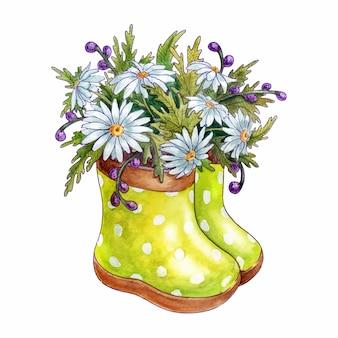고무 장화에 봄 꽃 chamomiles의 수채화 꽃다발. 흰 배경에 고립. 손으로 그린 그림입니다.