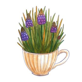 春の花の水彩画の花束。ムスカリとティーカップに葉。白い背景で隔離されました。手描きイラスト。