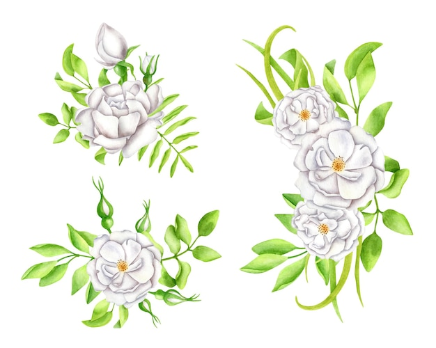 Watercolor bouquets set white flowers with leaves and rose buds arrangements