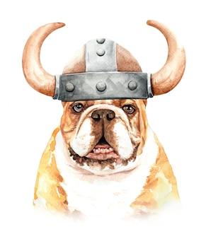Watercolor bulldog with viking hat
