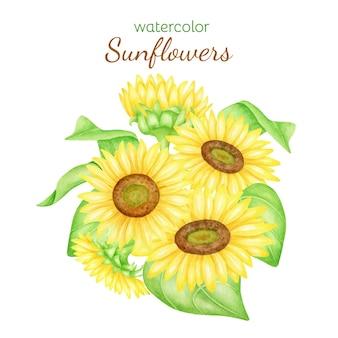 해바라기 그림의 수채화 무리 노란 꽃 꽃다발 그리기