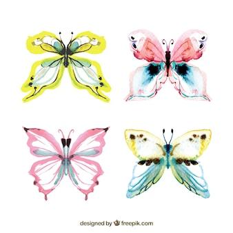 Farfalle acquerello