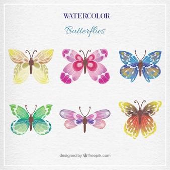 Акварель коллекция бабочка