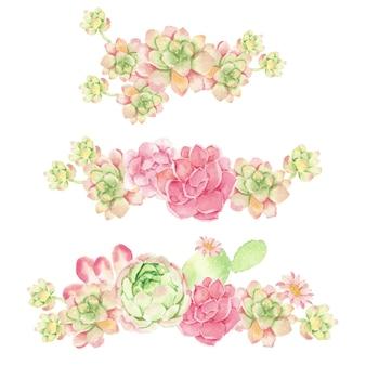 수채화 선인장과 절연 즙이 많은 꽃다발 배열