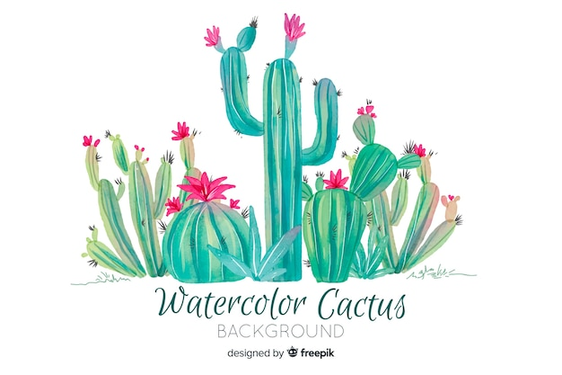 Watercolor cactus background