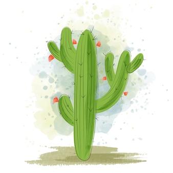 Watercolor cactus blooming