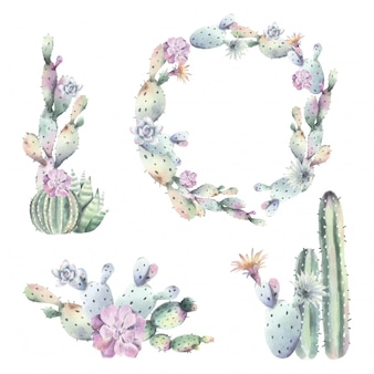 Watercolor cactus frames and bouquets