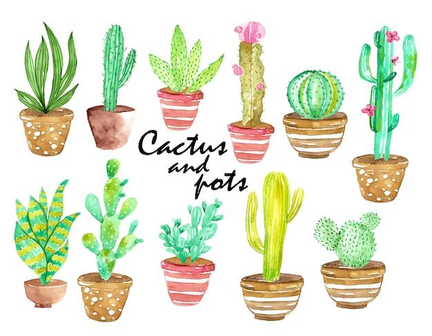Watercolor cactus and pots