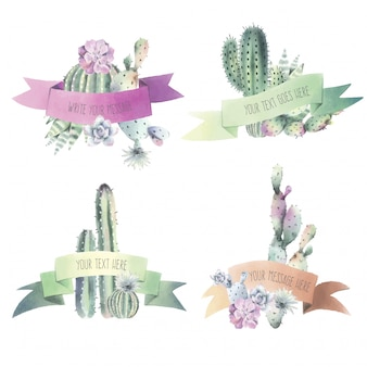 Watercolor cactus & ribbon collection
