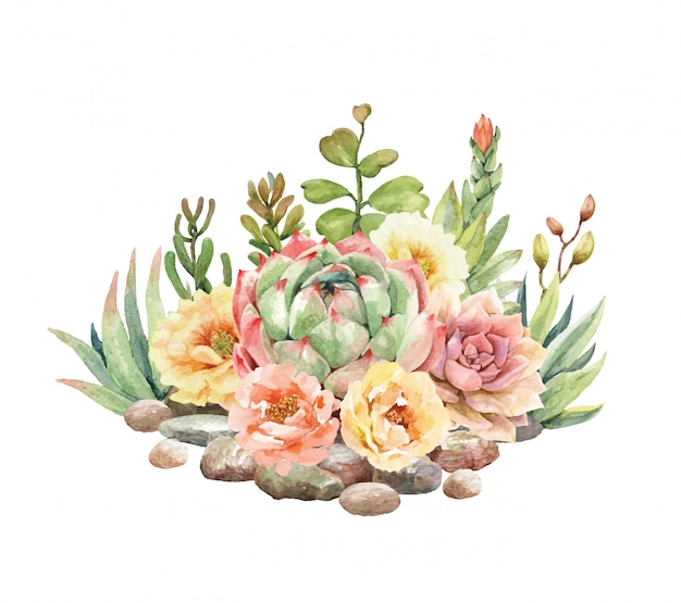 Watercolor cactus and succulent are surrounded by stones.